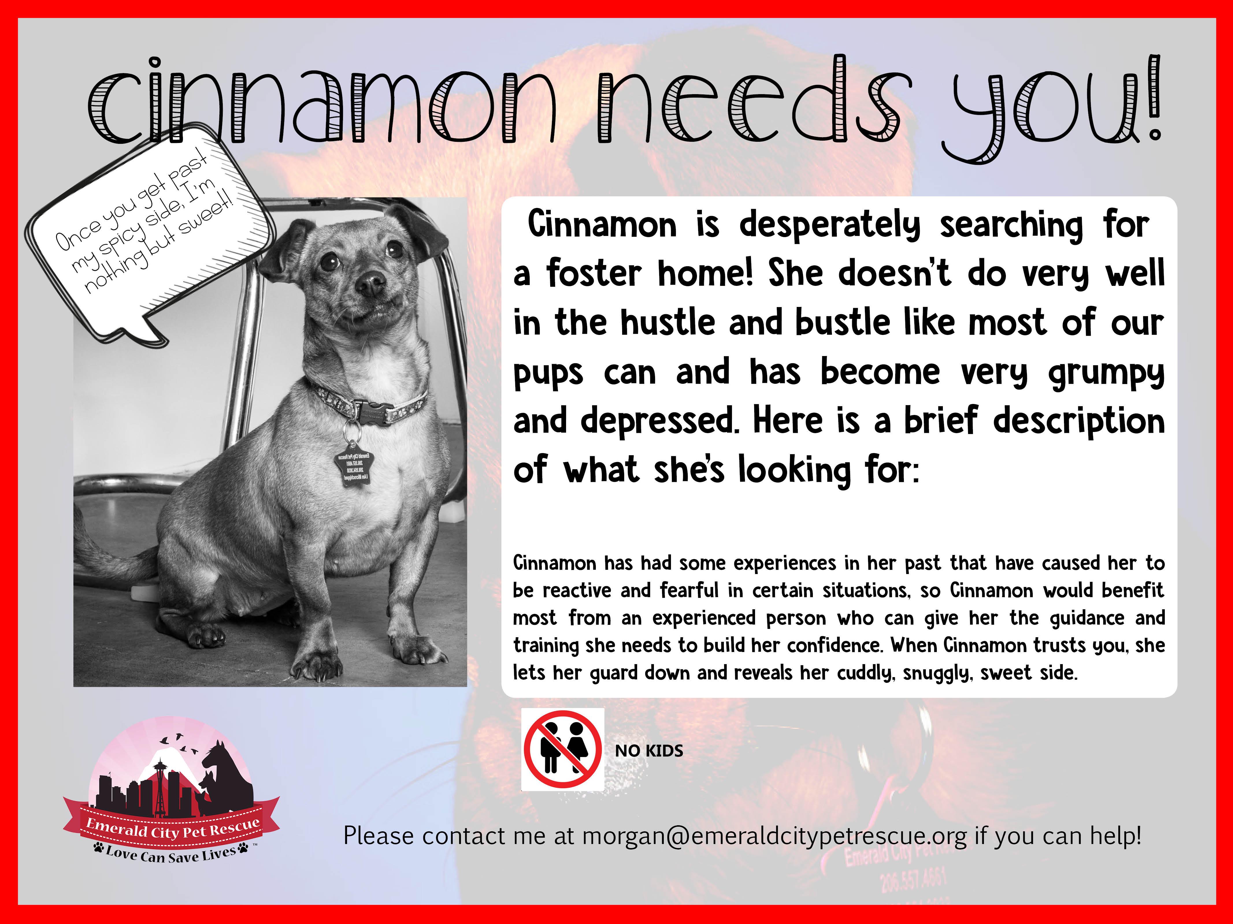 can i give my dog cinnamon