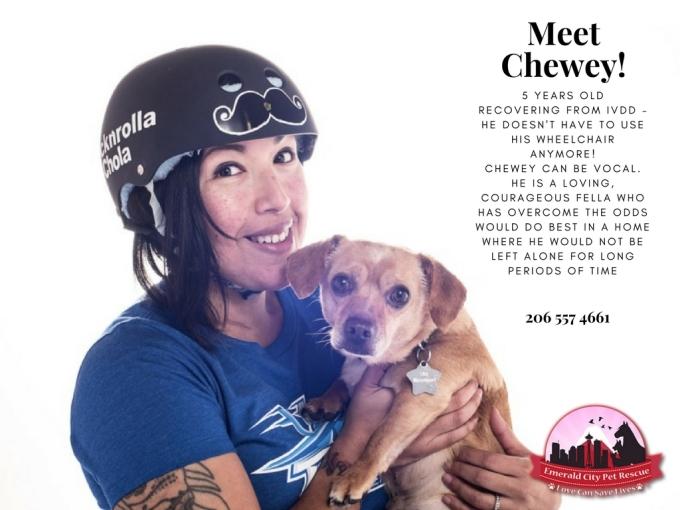 Meet Chewey! (1)