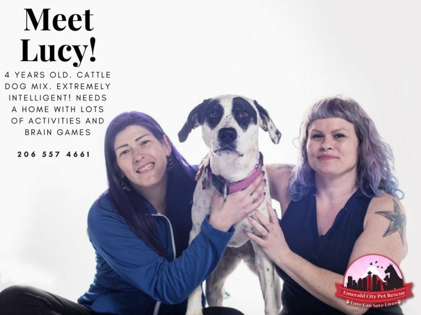 Meet Lucy! (4)